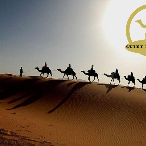 two nights by camels